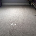 Cranberry Juice Stain Removal Plainfield B