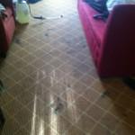Plainfield-Carpet-Clean-before