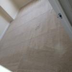 Plainfield-Carpet-Clean-room