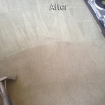 Plainfield-Carpet-Cleaning-Company