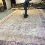 Plainfield-Professional-Rug-Cleaning