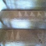 Plainfield-Stairs-Carpet-Cleaning