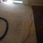 Plainfield-Traffic-Area-carpet-cleaners