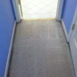 Plainfield-Vomit-2-after-carpet