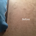 ink stain removal Plainfield-A